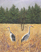 National Painting Posters - Pair of Sandhill Cranes Poster by Jymme Golden