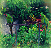 Paired Parrots In Paradise Print by PAMELA Smale Williams