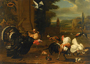 Garden Scene Metal Prints - Palace Garden Exotic Birds and Farmyard Fowl Metal Print by Melchior de Hondecoeter