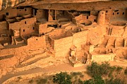 Mesa Verde Photos - Palace In The Cliff by Adam Jewell