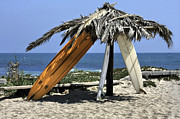 Julianne Bradford - Palapa of Old Boards