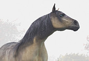 Wild Horse Digital Art Prints - Pale Blue-Eyed Horse Print by Daniel Eskridge