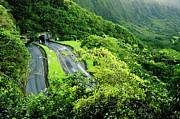 Charmian Vistaunet - Pali Highway