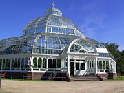 Fab Four  Art - Palm House Sefton Park Liverpool UK by Steve Kearns