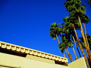 Rooftop Framed Prints - Palm Springs Rooftop Framed Print by Randall Weidner
