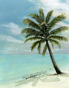 Original Oil On Canvas Posters - Palm Tree Study Poster by Cecilia  Brendel