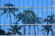 Theresa Willingham - Palm Trees in Blue