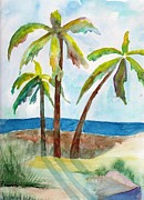 Sandi Stonebraker - Palm trees shadowing...