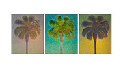 Artist Set Posters - Palm Trees Triptych Poster by Don Young