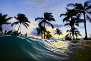 Surf Sea Framed Prints - Palm wave Framed Print by Sean Davey