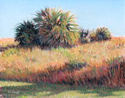 Warm Pastels Posters - Palmettos in Warm Light Poster by Deb LaFogg-Docherty