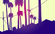 Sunset Drawings - Palms 2 by Giuseppe Cristiano
