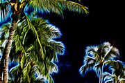 Frond Prints - Palms Fractal Print by Cheryl Young