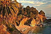 Big Sur Ca Metal Prints - Palms Over McWay Metal Print by Adam Jewell