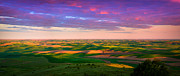 Green Hill Farm Posters - Palouse Land and Sky Poster by Inge Johnsson