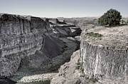 Tees Framed Prints - Palouse River Canyon 3 - Eastern Washington State Framed Print by Daniel Hagerman