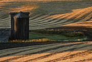 Harvest Photographs Prints - Palouse Sunset Print by Sandra Bronstein