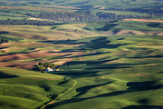 Palouse - Washington - Farms - #2 Print by Nikolyn McDonald