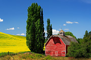 Farming Barns Posters - Palouse Weathered Barn Poster by Inge Johnsson
