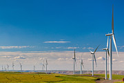 Inge Johnsson - Palouse Wind Farm