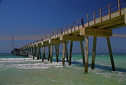 Panama City Beach Posters - Panama City Beach Pier Poster by Jon Reddin Photography