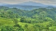 Rural Area Framed Prints - Panama Landscape Framed Print by Heiko Koehrer-Wagner