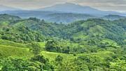Panama Landscape Print by Heiko Koehrer-Wagner