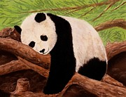 Decorative Pastels Framed Prints - Panda Framed Print by Anastasiya Malakhova