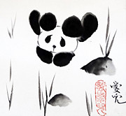 Sumie Framed Prints - Panda Time Framed Print by Oiyee  At Oystudio