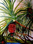 Jason Sentuf - Pandanus Palm Fruit