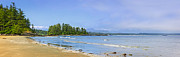 Green Trees Framed Prints - Panorama of Pacific coast on Vancouver Island Framed Print by Elena Elisseeva