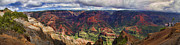Panorama Framed Prints - Panorama of Waimea Canyon Hawaii Framed Print by David Smith