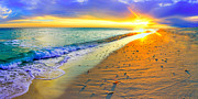 Sunrays Pyrography Posters - Panoramic Florida Sunset Beach shells Fine Art Poster by Eszra Tanner