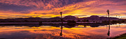 Yuma Framed Prints - Panoramic Sunrice Framed Print by Robert Bales