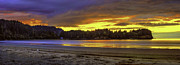 Fir Trees Photo Originals - Panoramic Sunset at Crescent Beach Washington by Rod Mathis