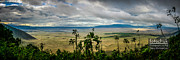 Scenic - Landscape - Panoramic View of Ngorongoro Crater by Darcy Michaelchuk