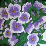 Usha Rai Framed Prints - Pansies Framed Print by Usha Rai
