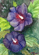 Tis Art Metal Prints - Pansy Blooms Metal Print by Tis Art