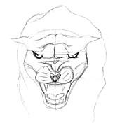 Panther Sketch Print by J M L Patty