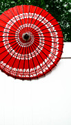 Umbrella Prints - Paper Umbrella with Swirl Pattern on Fence Print by Amy Cicconi