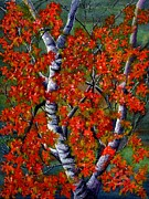 Red Maple Leaves Prints - Paper White Birch reflections Print by Janine Riley