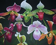 Bonnie Golden - Paph Meeting