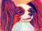 Dogs Digital Art Posters - papillion II Poster by Jane Schnetlage