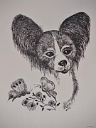 Toy Animals Drawings Framed Prints - Papillon Framed Print by Maria Urso - Artist and Photographer