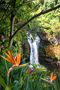 Paradise Digital Art Framed Prints - Paradise Falls Framed Print by Doug Kreuger