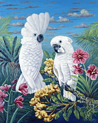 Cockatoo Painting Framed Prints - Paradise for Too Framed Print by Danielle  Perry