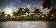 Florida Digital Art - Paradise Found by Ellen Lacey