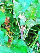 Paradise Print by Kathie McCurdy