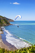 Auckland Prints - Paragliding at Maori Bay Auckland Print by Colin and Linda McKie