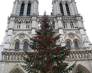 Photos With Red Framed Prints - Paris Christmas Photography - Notre Dame Cathedral Christmas Tree - Paris at Christmas Framed Print by Kathy Fornal